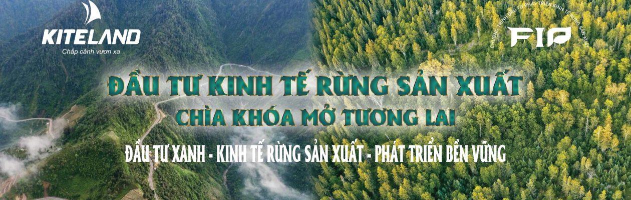 Đầu tư kinh tế rừng sản xuất