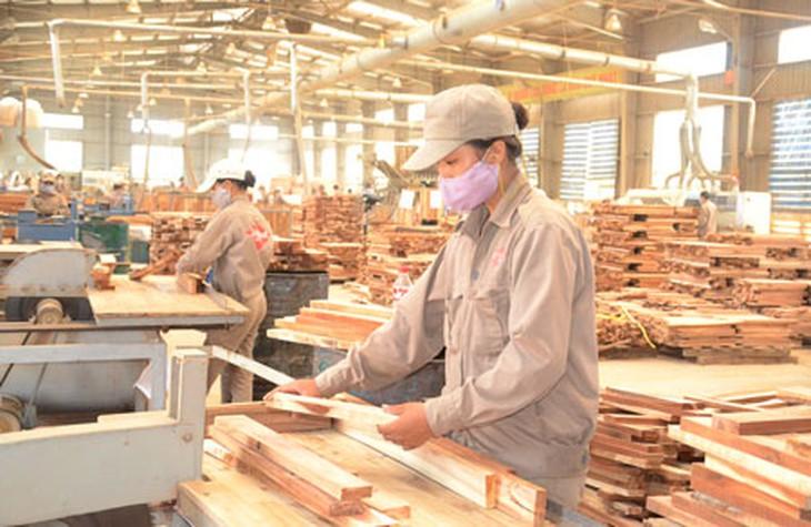 Mục đích sử dụng đất rừng sản xuất